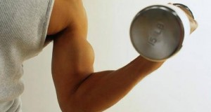 Levantando Peso de Bíceps