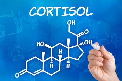 Dieta para quem tem cortisol alto