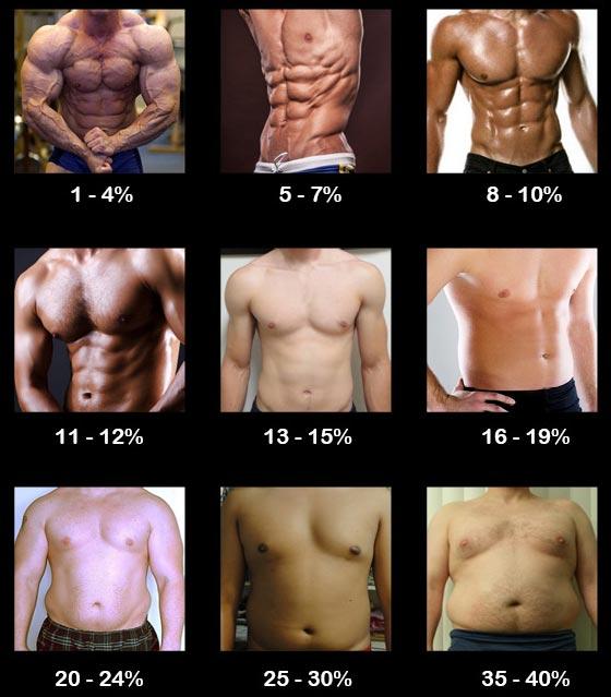 Percentual de gordura