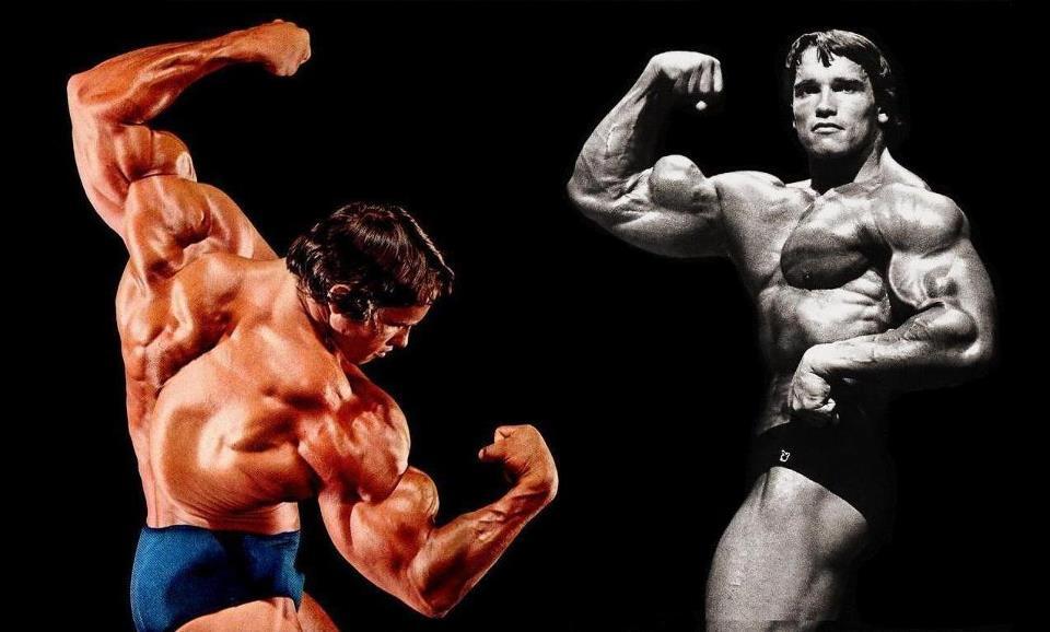 Arnold Schwarzenegger - Dieta, Treino, Medidas, Fotos e