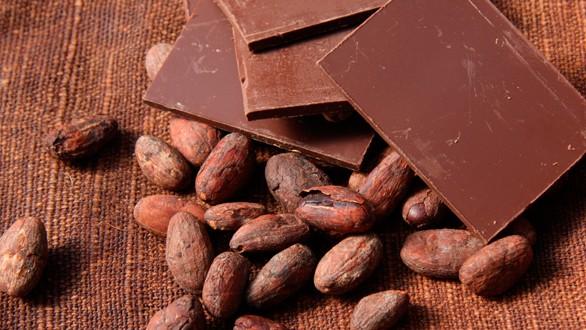 Cacau e chocolate