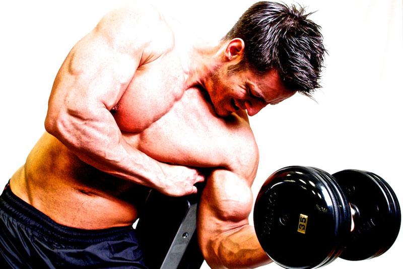 Bíceps concentrado
