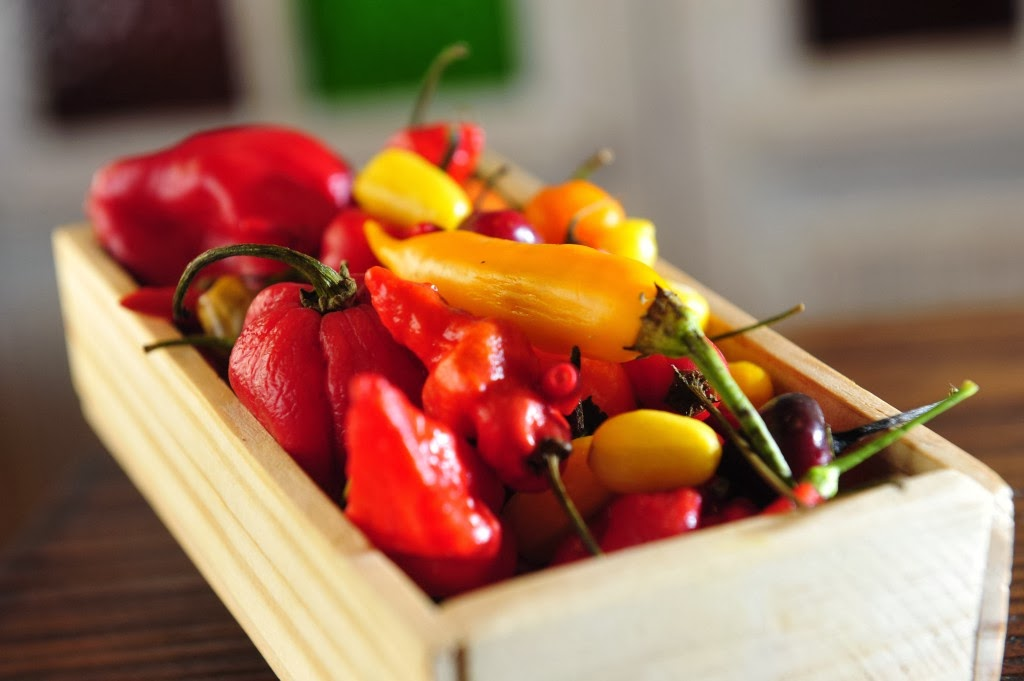 como alimentarse para perder peso