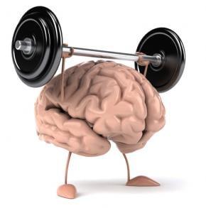 tipos de memoria muscular