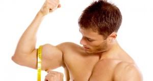 Bíceps medida