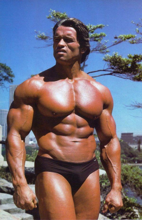 bodybuilders 4 - Texto 8
