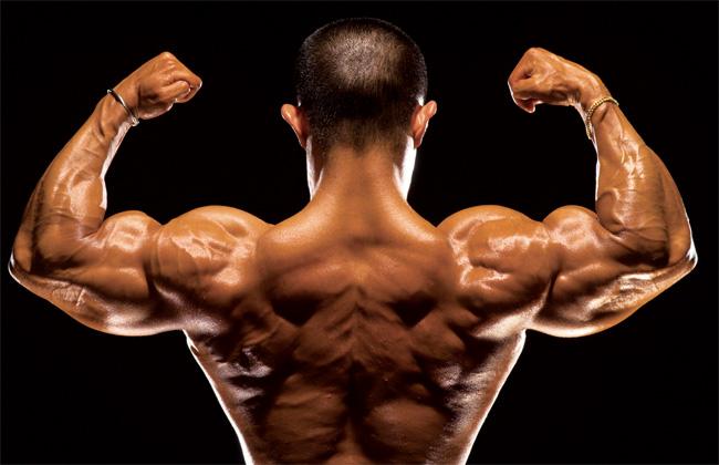 Músculos fortes
