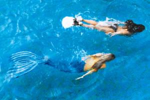 2aboaforma - mermaids