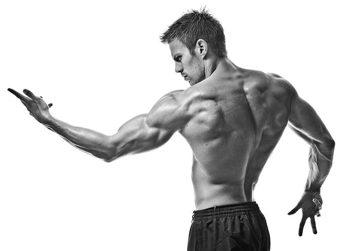 9c-músculos