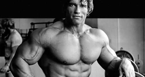 Arnold Schwarzenegger   Dieta, Treino, Medidas, Fotos E Vídeos    MundoBoaForma.com.br