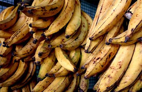 banana-pacova