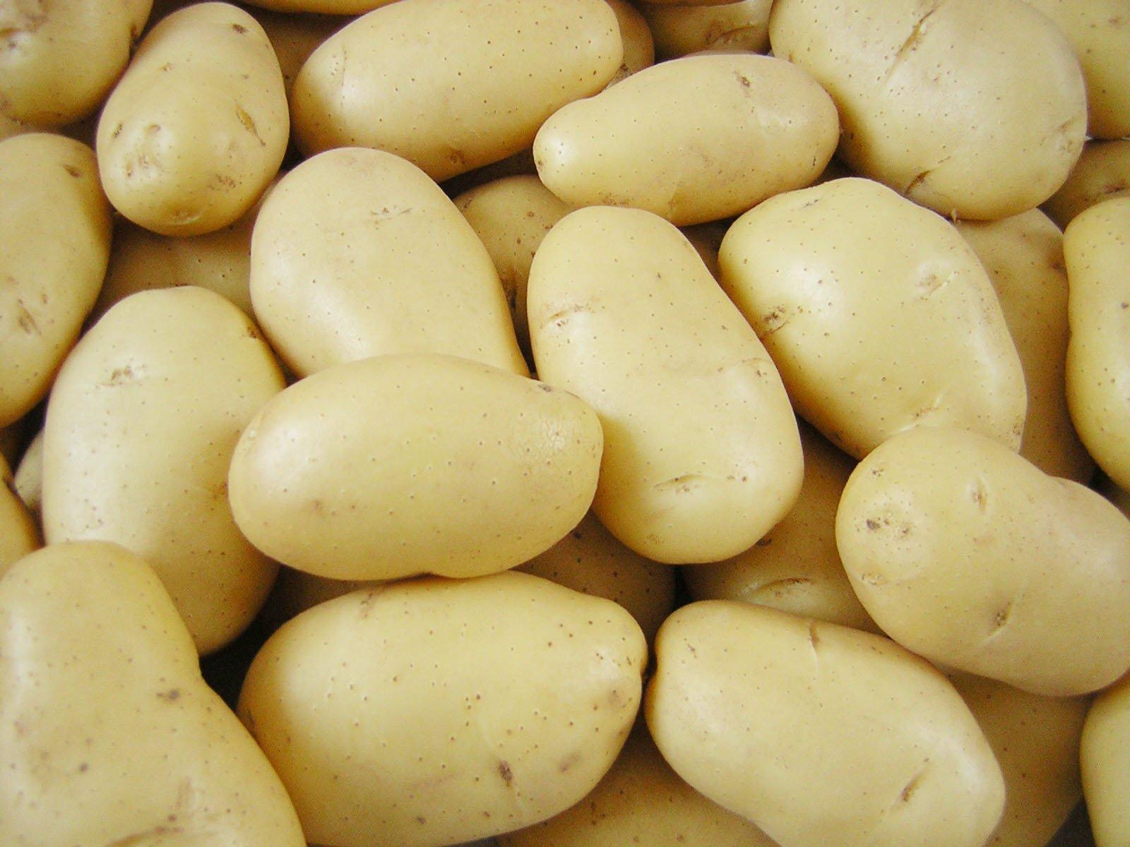 calorias batata doce assada
