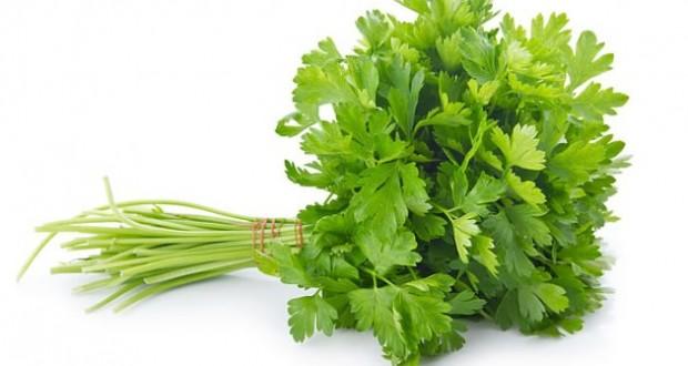 Benef cios da salsa para que serve e propriedades for Salsa de hierba luisa