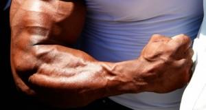 Freaky-Forearm-Training
