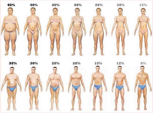 percentual-de-gordura-corporal-corpos