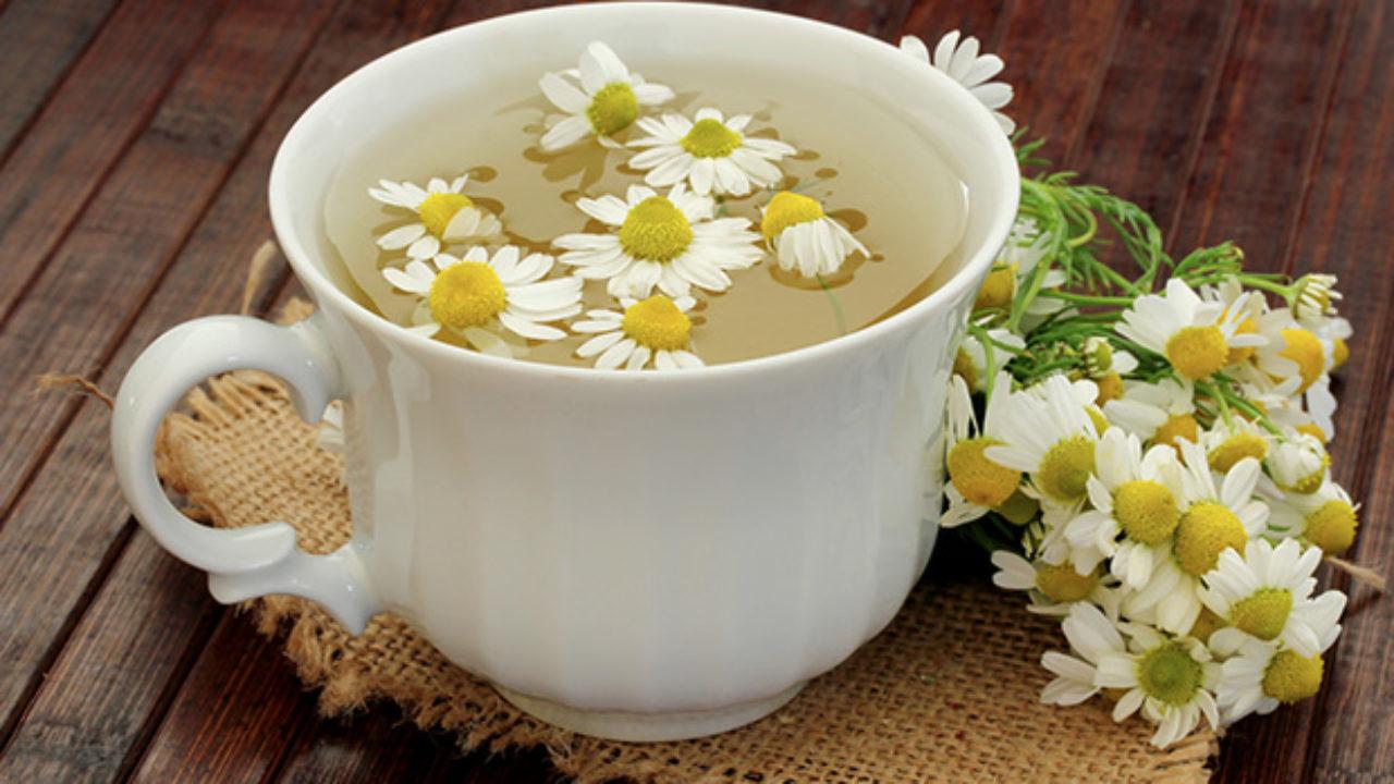 Como Fazer Chá de Camomila - Receita e Dicas - MundoBoaForma.com.br