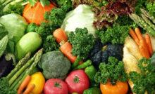 Pode tomar activia na dieta