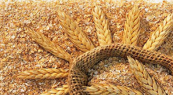 eliminar trigo da dieta