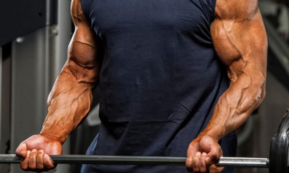 Rosca: Músculos em evidência