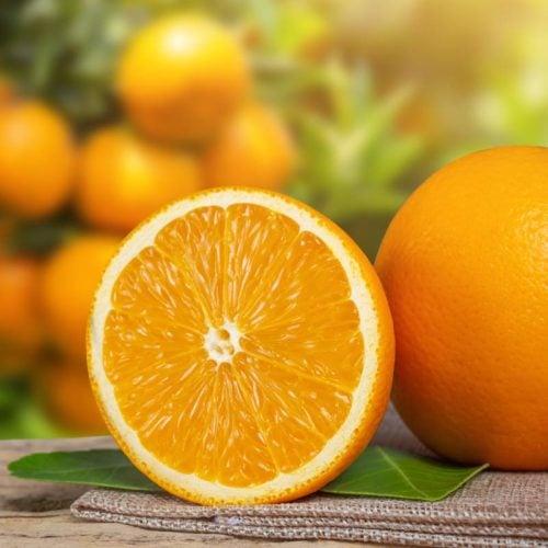 laranjas no jardim