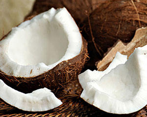 oleo de coco metabolismo