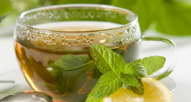 Resultado de imagem para chá de boldo