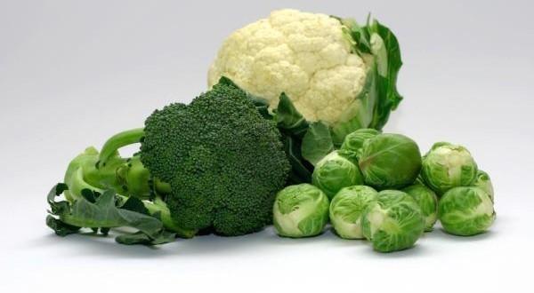Comidas com vitamina K