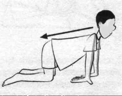 alongamento antebraço