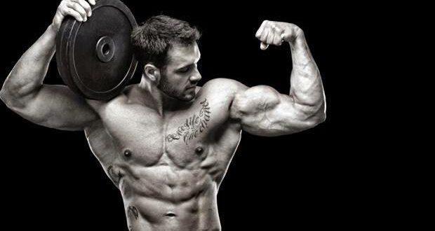 36 Frases De Bodybuilding Para Motivação Máxima Mundoboaformacombr