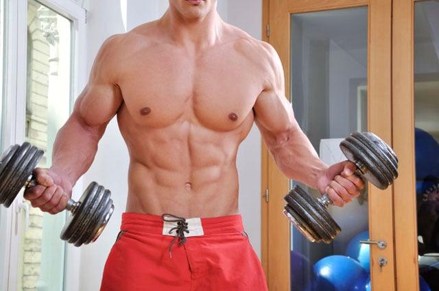 Resultado de imagem para massa muscular