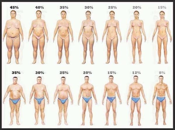 tipo fisico gordura localizada
