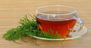 Chá de cavalinha