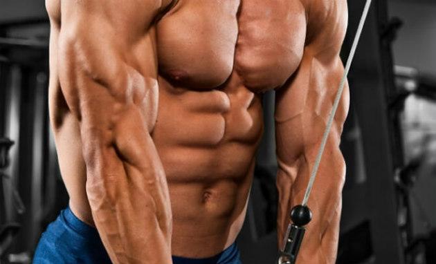 Exercício de tríceps