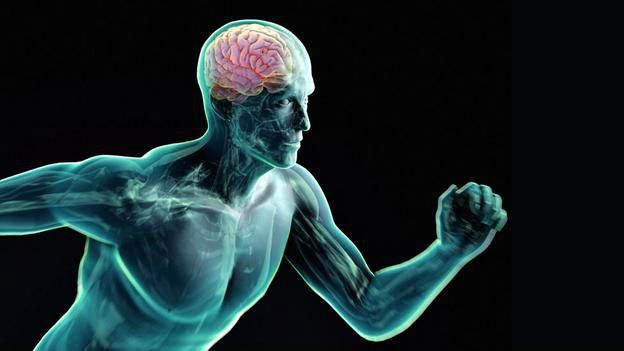 Exercício e cérebro