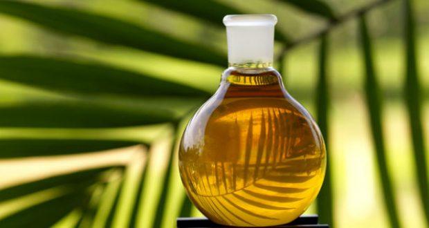 Resultado de imagem para Benefícios do óleo de mirra