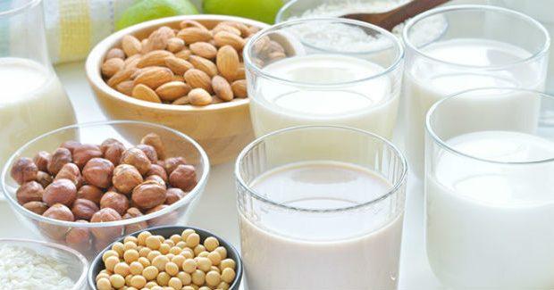 Leites sem lactose