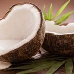 Tudo sobre o Leite de Coco - Benefícios, Como fazer, Onde Encontrar, Receitas e Dicas