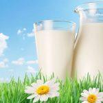 O Leite Ideal para Dietas Low Carb (Menos Carboidratos) - Dicas e Receitas