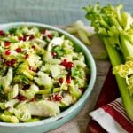 7 Receitas de Salada de Salsão Light