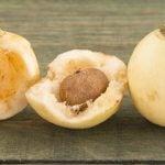 6 Benefícios da Fruta Jambo - Para Que Serve e Propriedades