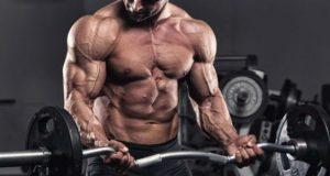 Bíceps rosca