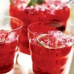 7 Benefícios do Suco de Hibisco - Como Fazer, Receitas e Dicas