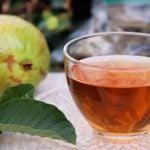 Chá de Folha de Goiaba - Receita, Como Fazer e Dicas