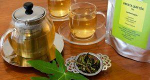 Chá de folha de mamão