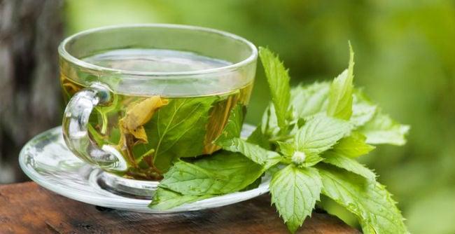 para que sirve el menta planta medicinal