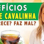 [Video] Por Que Tomar Chá de Cavalinha?