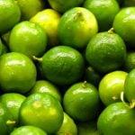 Limão Acelera o Metabolismo? Como Usar?
