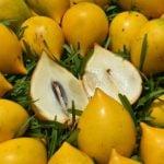 9 Frutas Exóticas Brasileiras e seus Benefícios