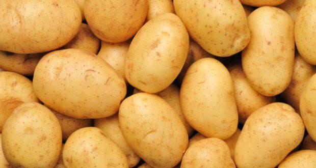 Batatas