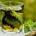 Chá de Salsa para os Rins Funciona?